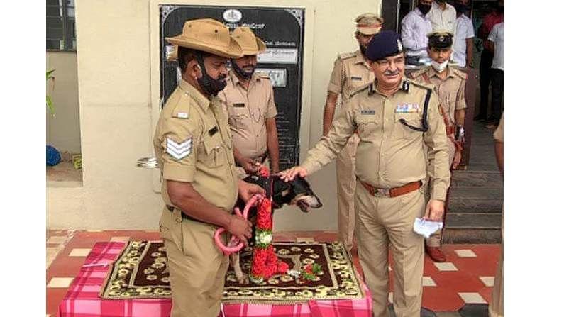 Police Dog Thunga Tunga