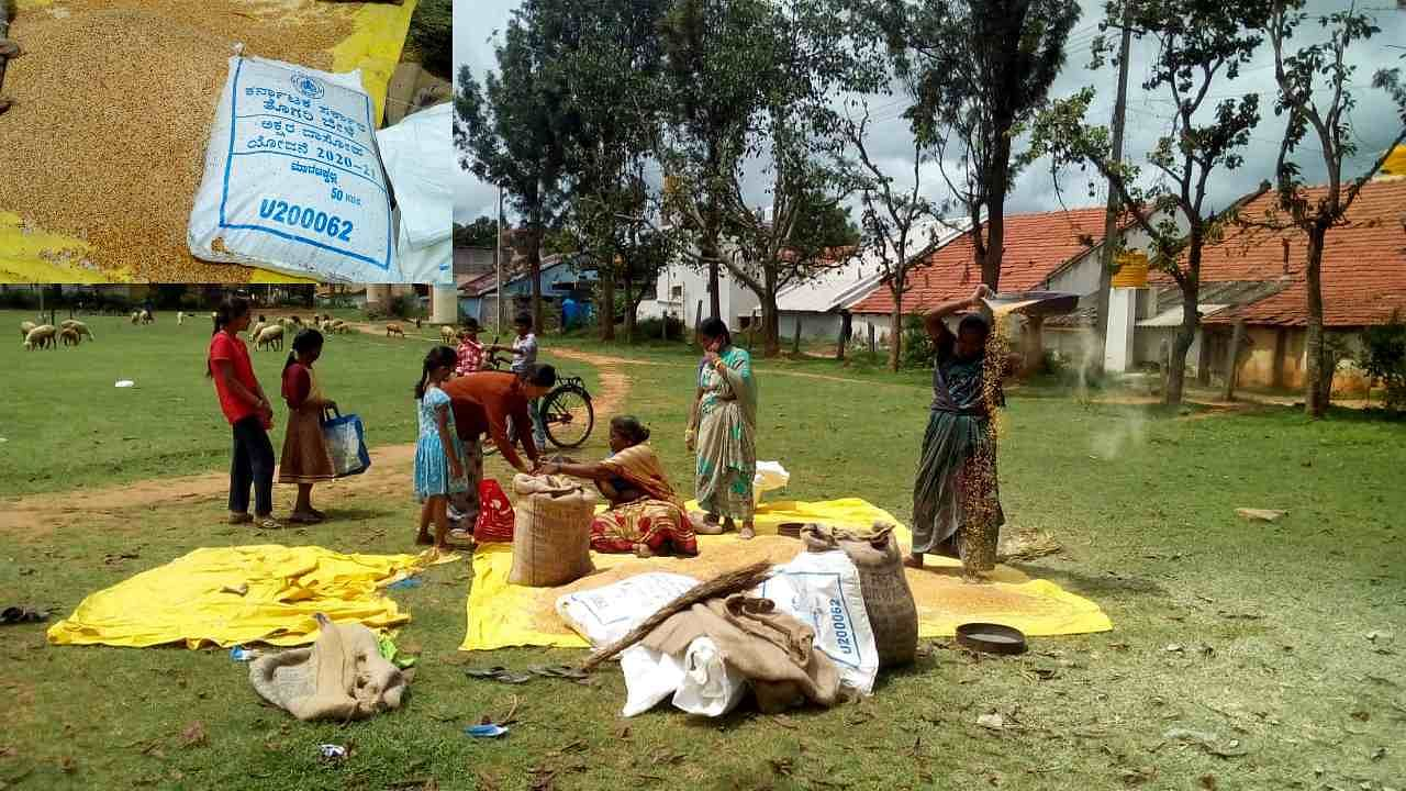 worms found in bisi uta in karnataka education minister constituency in tiptur